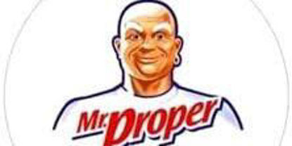 Picture of Mr. Proper